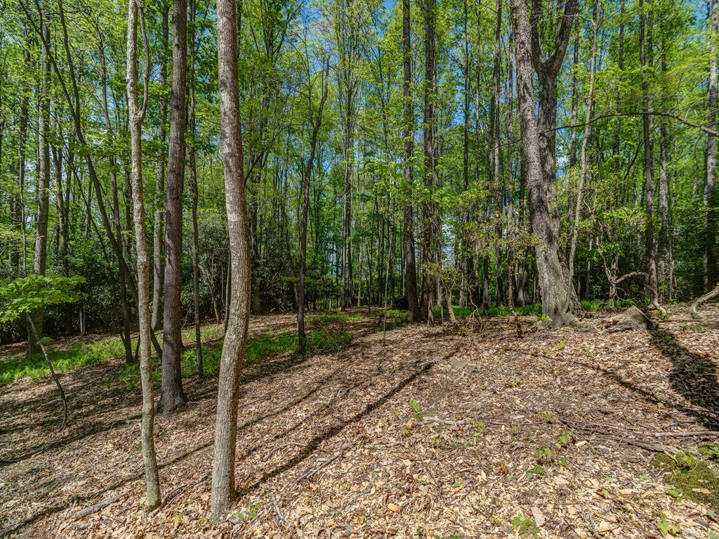 Lot 2 Powder Springs Trail in Arden, North Carolina 28704 - MLS# 3385713
