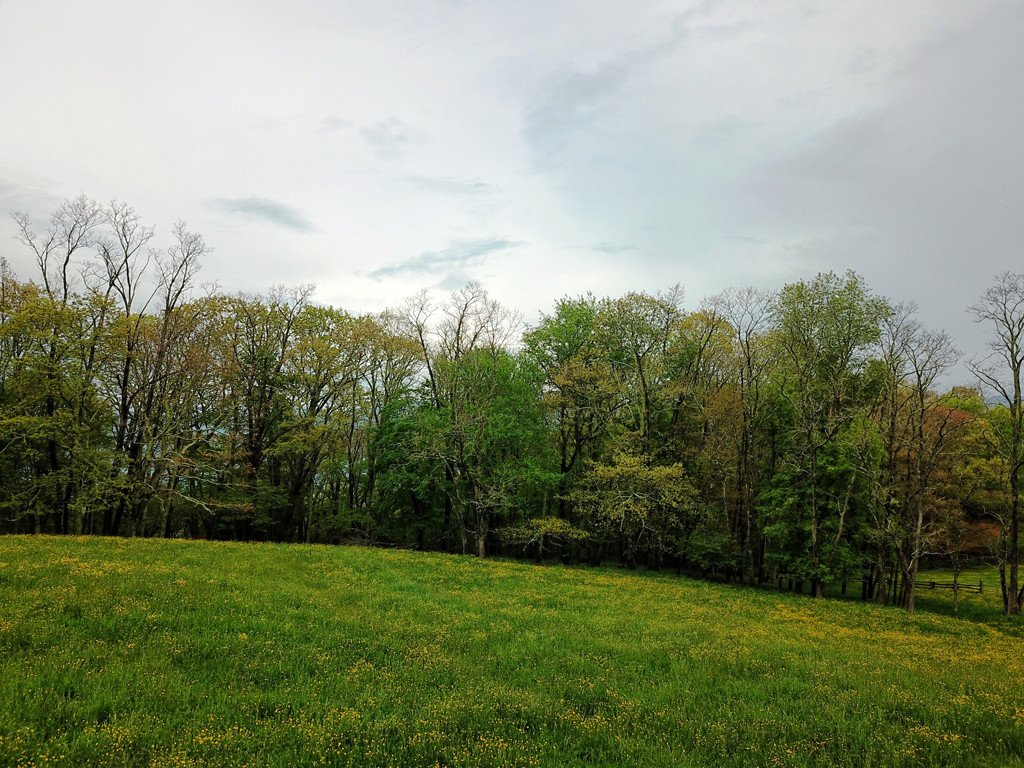 Lots 1-3 Triple Gate Road #Lots 1-3 in Maggie Valley, North Carolina 28751 - MLS# 3394467