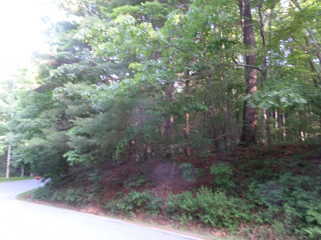 Lot 69 Indigo Way in Laurel Park, North Carolina 28739 - MLS# 3396070