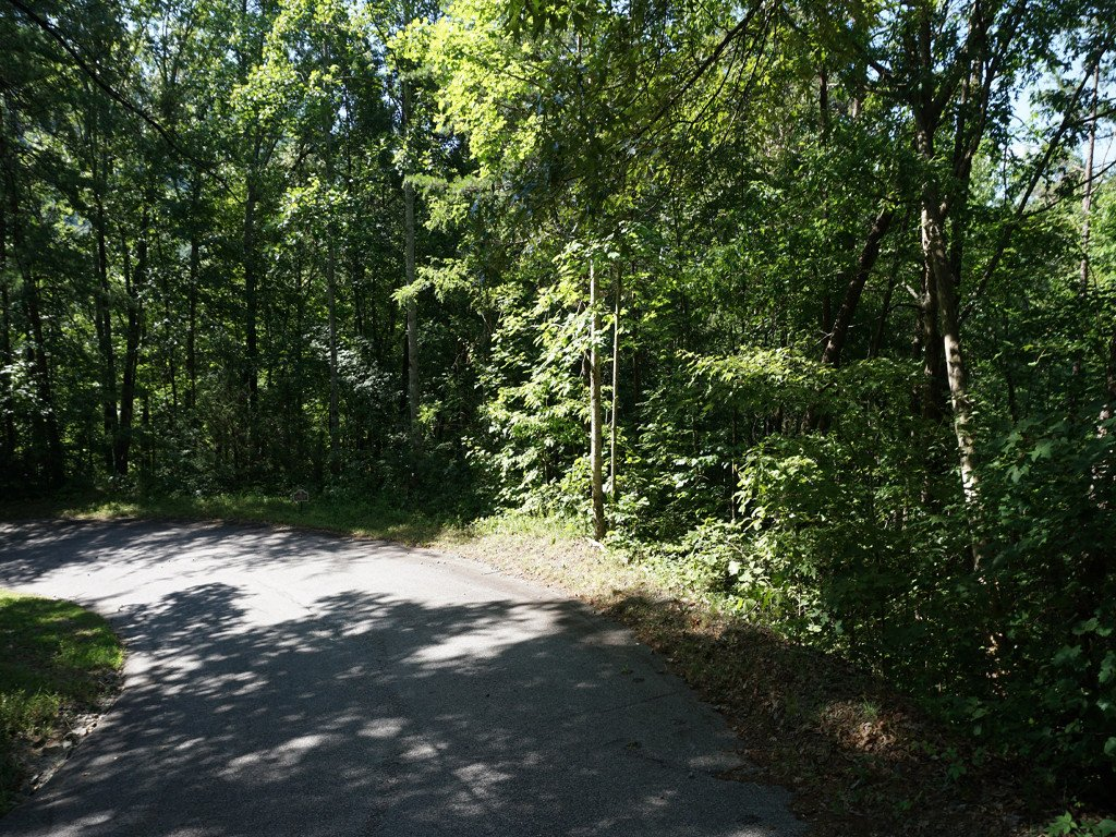 Lot 167 Deerfield Drive in Lake Lure, North Carolina 28746 - MLS# 3403063