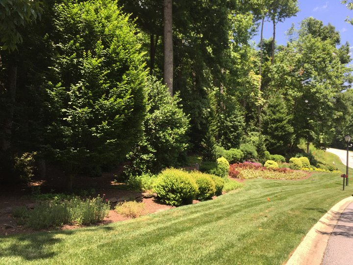 Image 1 for 559 Hagen Drive #1 in Hendersonville, North Carolina 28739 - MLS# 3397458