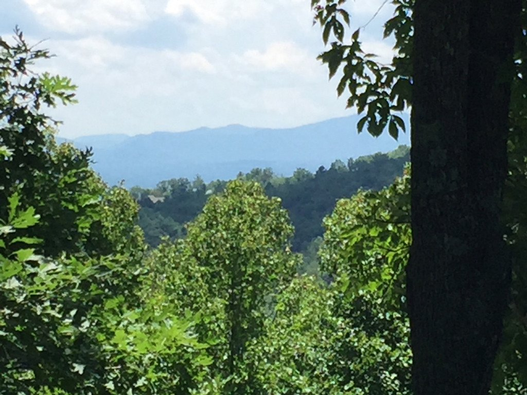 Lot 98 Starling Pass in Asheville, North Carolina 28804 - MLS# 3416504