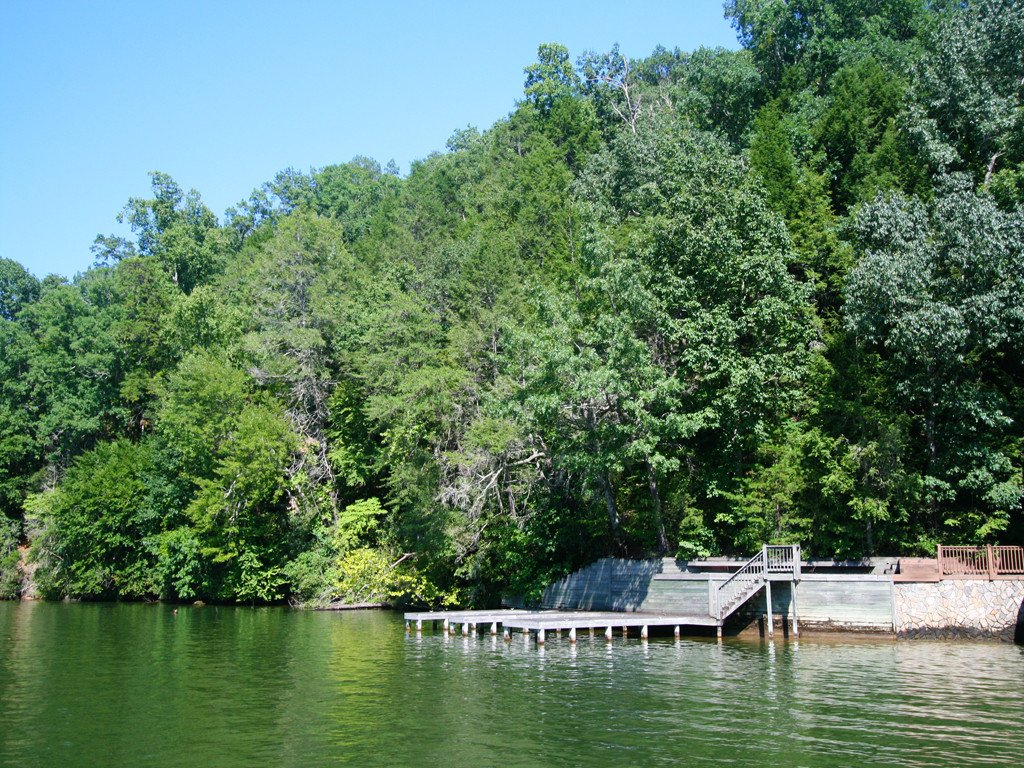 10 Buffalo Shoals Road in Lake Lure, North Carolina 28746 - MLS# 3418894