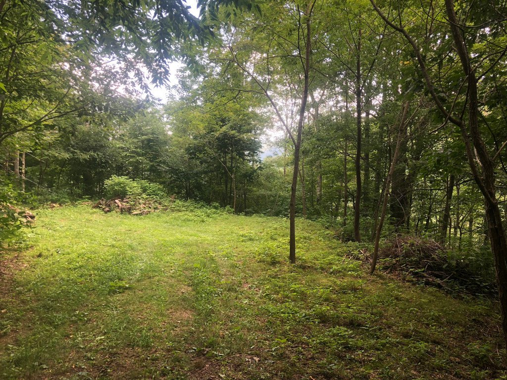 Lot 32 Minot Lane #32 in Maggie Valley, North Carolina 28751 - MLS# 3424363