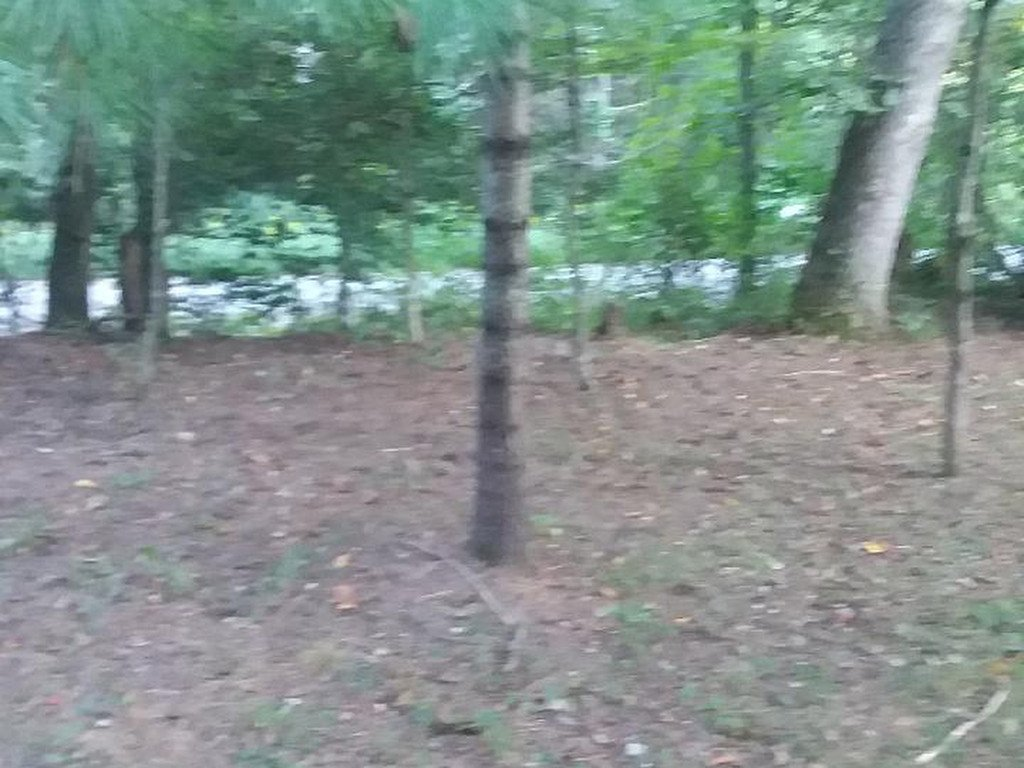 Lot 5 Konatoga Hills Circle in Gerton, North Carolina 28735 - MLS# 3434083