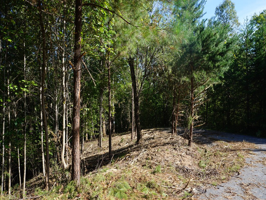 Lot 90 Northridge Drive in Rutherfordton, North Carolina 28139 - MLS# 3440427