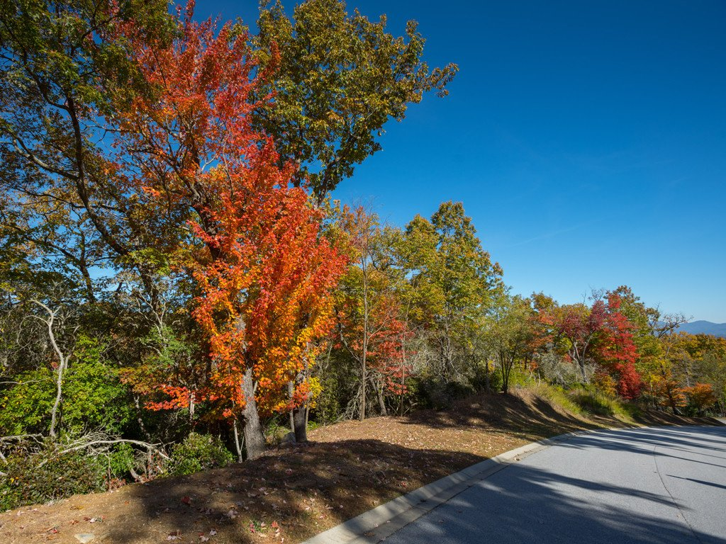 Lot 113 Blue Mountain Way in Mills River, North Carolina 28742 - MLS# 3447397