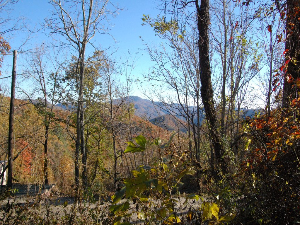 Lot 3 Mountain Cove Road in Black Mountain, North Carolina 28710 - MLS# 3449951