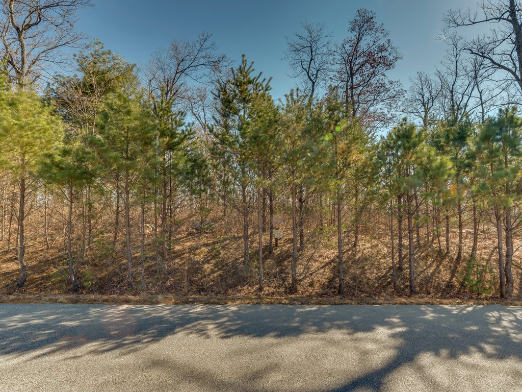 Lot 275 Kincaid Place in Mill Spring, North Carolina 28756 - MLS# 3455960
