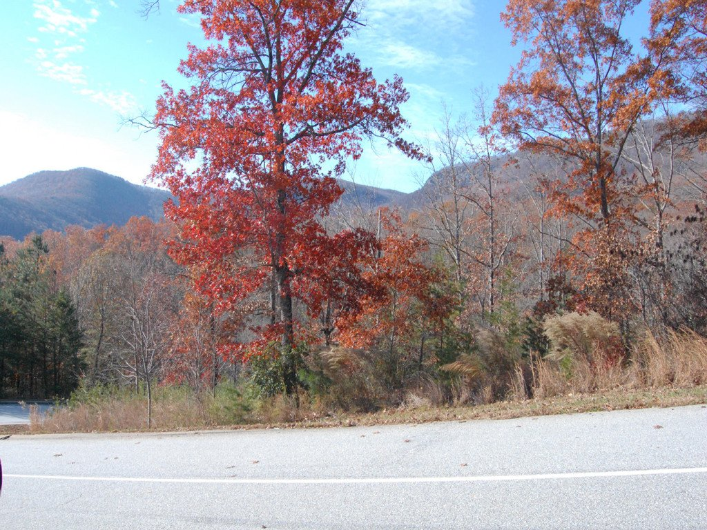 Lot 114 Deep Gap Farm Road in Mill Spring, North Carolina 28756 - MLS# 3455990