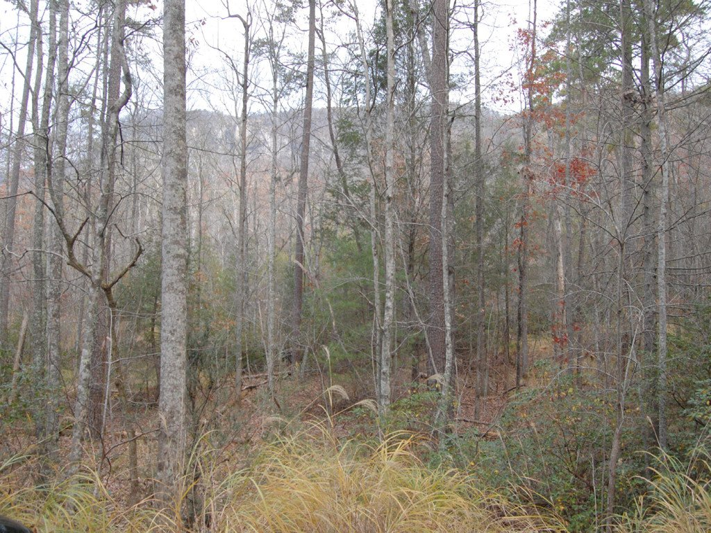 Lot 114 Bald Hill Court in Lake Lure, North Carolina 28746 - MLS# 3456376