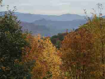 Lot 11 Jefferson Lane #11 in Waynesville, North Carolina 28786 - MLS# 3483229