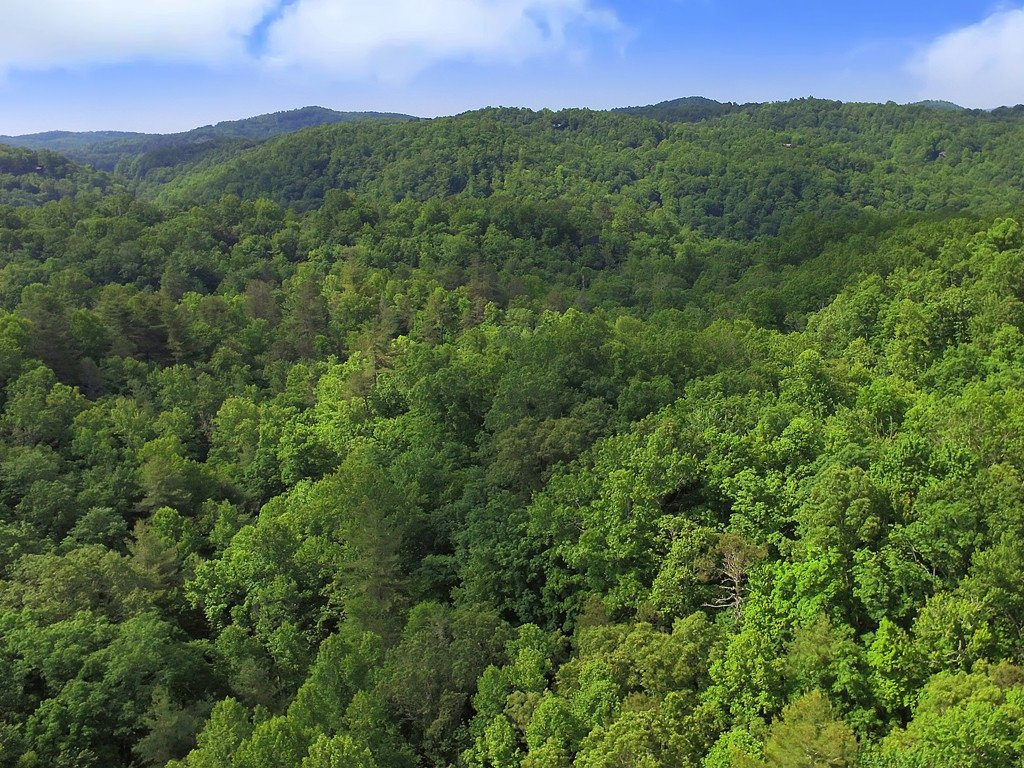 Tbd Cantrell Mountain Road in Brevard, North Carolina 28712 - MLS# 3491070