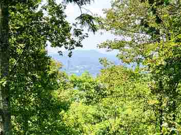 4 Ventana Drive #37 in Asheville, North Carolina 28804 - MLS# 3493792