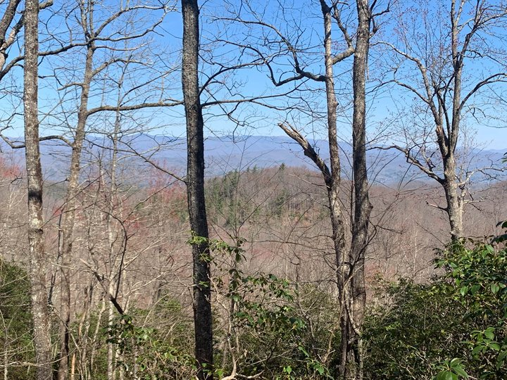 Image 1 for Tbd Whitetail Trail in Rosman, North Carolina 28772 - MLS# 3493727