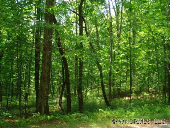 37 Frazier Road #Lot 037 in Brevard, North Carolina 28712 - MLS# 417052