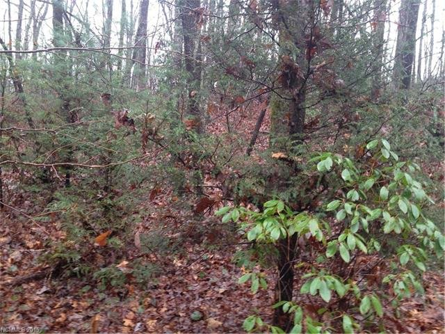 3 Cardinal Road #Lot L003 in Brevard, North Carolina 28712 - MLS# 3132066