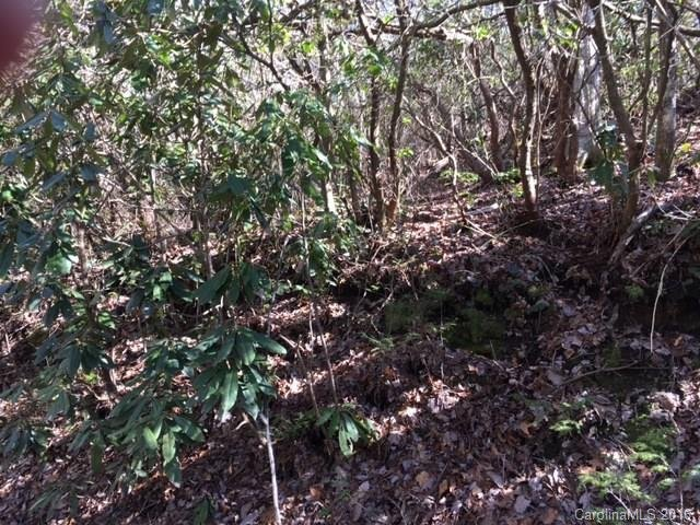 3 Oriole Road #Lot 003 in Brevard, North Carolina 28712 - MLS# 3163508