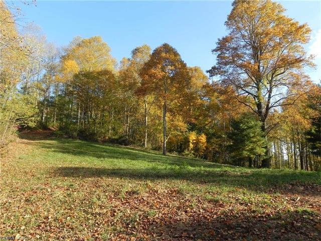 9999 Elk Mountain Scenic Highway in Asheville, North Carolina 28804 - MLS# 3224703