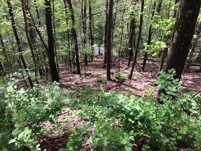 000 High Vista Drive #Lot 101 & Lot 107 in Mills River, North Carolina 28759 - MLS# 3274834