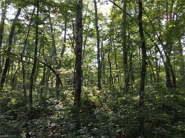Lot 16 Robin Hood Road in Brevard, North Carolina 28712 - MLS# 3290046