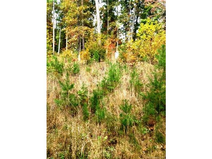 Image 1 for Lot 256 Snail Hook Trail in Lake Lure, North Carolina 28746 - MLS# 3315684