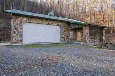 245 Paint Fork Road in Barnardsville, North Carolina 28709 - MLS# 3391932