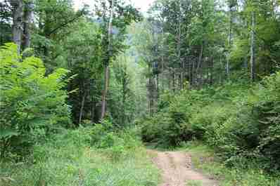 9999 Paint Fork Road in Barnardsville, North Carolina 28709 - MLS# 3417799