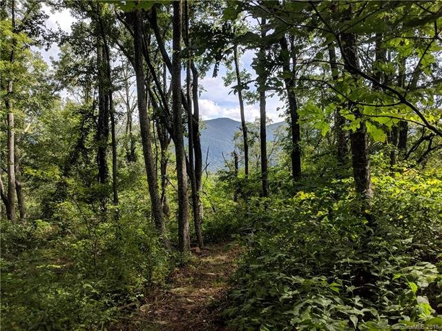 13+ Acres Elk Mountain Scenic Highway in Asheville, North Carolina 28804 - MLS# 3430610