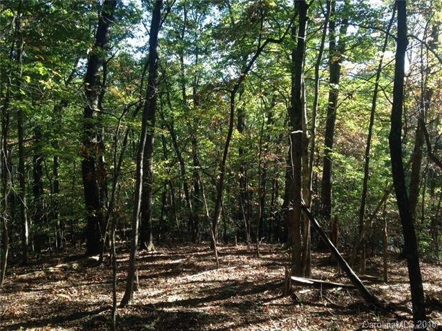 Lot 62 Rixhaven Drive in Saluda, North Carolina 28773 - MLS# 3449979