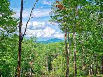 000 Lure Ridge Drive #24 in Lake Lure, North Carolina 28746 - MLS# 3454462