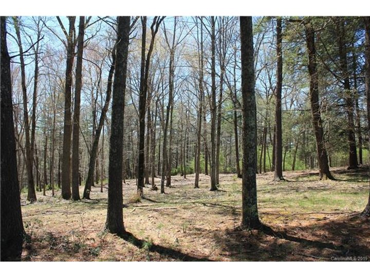 Image 1 for Lot 1 Cedar Hill Drive in Biltmore Forest, North Carolina 28803 - MLS# 3465132