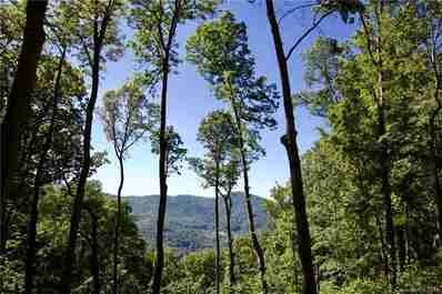 Lot 13 Rambling Ridge Road in Asheville, North Carolina 28804 - MLS# 3507799