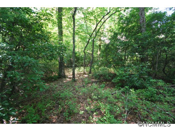 6 Hollydale #6 cottage section in Pisgah Forest, North Carolina 28768 - MLS# 568562